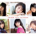 2019年オリジナルCM NOWカレンダー(「CM NOW」Vol.196付録、玄光社)