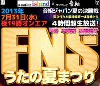 fns-summer2013
