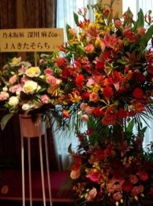 jakitasorachi-flower