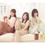 乃木坂46クリアファイル(「明治しまるボトルキャンペーン」景品)