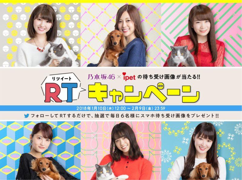乃木坂46 × ipet Twitterキャンペーン