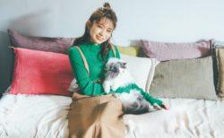 秋元真夏が「乃木坂OLプロジェクト」で猫と共演(講談社「with」2020年12月号)